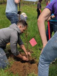 Matt Planting Trees
